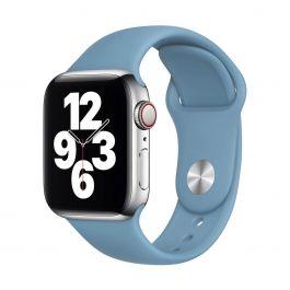 Curea Apple pentru Apple Watch 40mm Band: Northern Blue Sport Band - Regular (Seasonal Nov2020)