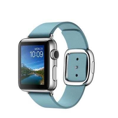 Apple Watch Stainless Steel Case with Blue Jay Modern Buckle Large (38mm)
