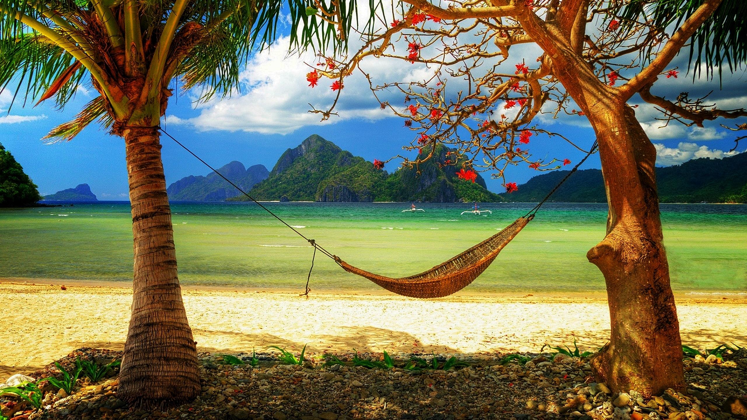 imagine de pe plaja cu hamac
